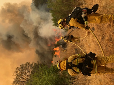 SFFD Fighting NorCal Fires